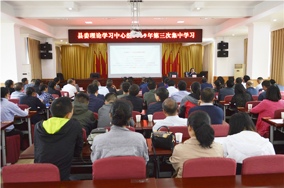 县委理论学习中心组开展2019年第三次集中学习