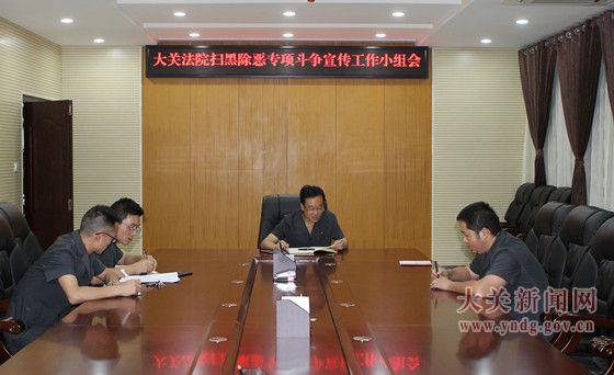 大关法院召开扫黑除恶专项斗争宣传工作小组会