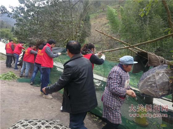 高桥镇:志愿行动服务农村人居环境整治