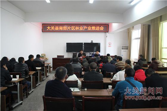 雷楚英主持召开大关县南部片区林业产业推进会
