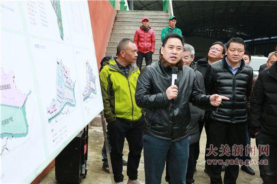 雷楚英到乡镇调研指导竹产业发展