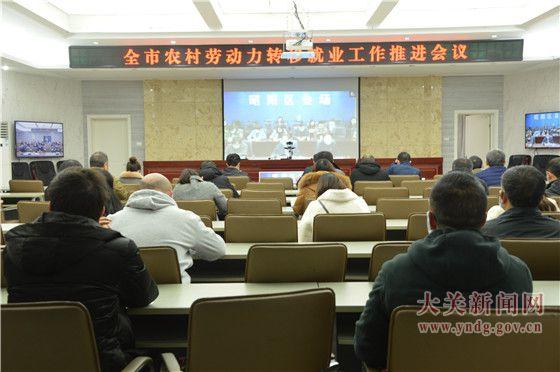 全市农村劳动力转移就业工作推进视频会议召开